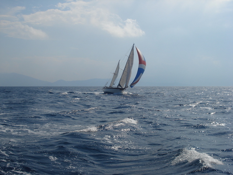 trips eclipse sailing